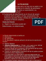 lafiliacion-110117215815-phpapp01