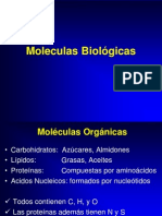 3Moléculas Orgánicas.ppt