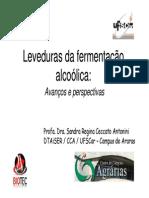 28_Leveduras_na_fermentacao_alcoolica.pdf