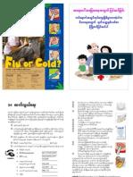 H1N1 Pandamic Flu Bro-Myan