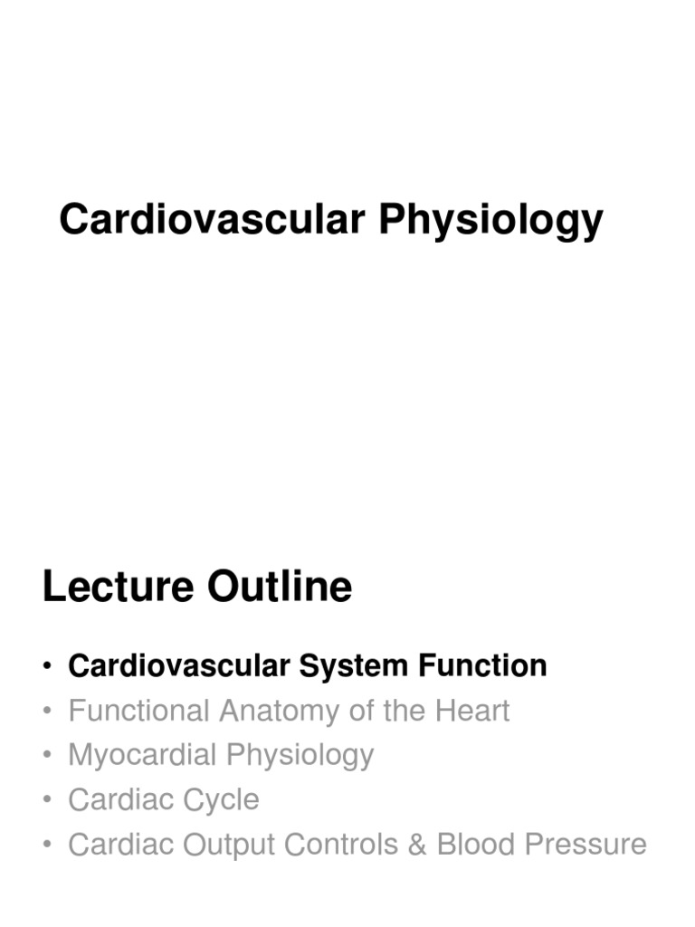 Cardiovascular Physiology Muscle Contraction Heart