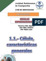 celulas_especializadas