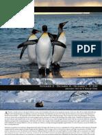2010 Antarctica Cruise