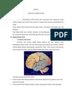 Susunan Saraf Otak
