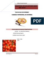 IDEA DEL PLAN de NEGOCIO de Salsa de Tomate Jejeejjoj