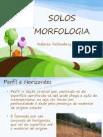 Aula 3 - Morfologia - Conservação dos Solos