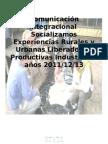 Comunicacion Integracional Socializadores Experiencias Productivas