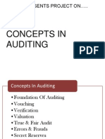 Auditing New (1)