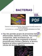 bacterias-090714185843-phpapp02