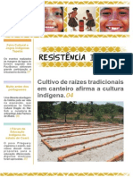 Jornal Resistência Indígena