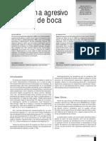 casosueloboca.pdf