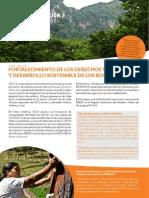 Clima&Bosques