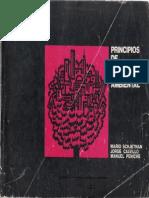 Principios de diseño urbano ambiental 1