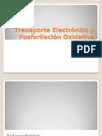 Fosforilación Oxidativa 1