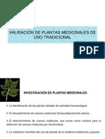 VALIDACIÓN DE PLANTAS MEDICINALES DE USO TRADICIONAL