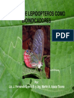 especies lepidopteros