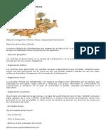 RESUMEN DE LA CULTURA CHIBCHA.doc