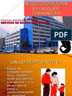 2-Riesgo Ocupacional y Salud Reproductiva