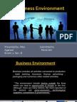 Business Environment (1)