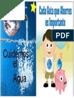 Cuidados Del Agua