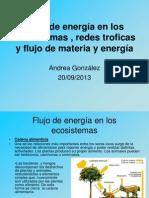flujodeenergaenlosecosistemasredes
