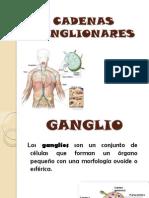 Cadenas Ganglionares n