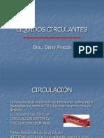 LIQUIDOS CIRCULANTES - FISIOLOGÍA CORAZÓN -DEISY