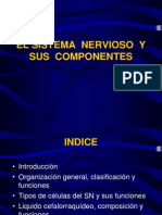 Sistema Nervioso Componentes