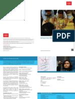 EFFECTIVE PROBLEM SOLVING - Overview - Sample Program Pamplet