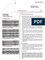punj report12111PDF