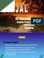 Ginjal (Dr.sri Suyanti)