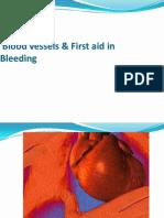 General Description of Heart & Blood Vessels