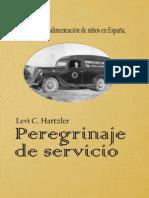 Peregrinaje de Servicio
