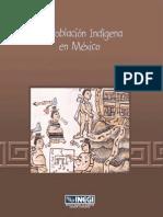 La Poblacion Indigena en Mexico(INEGI)