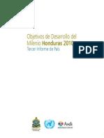 Informe ODM 2010 Completo