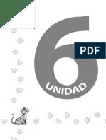 RA Unidad 6