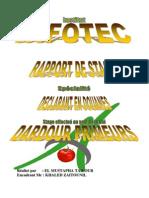 b762c97e5e7c55a4381bd00ba2e4794c-Rapport-de-stage-55