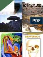 Anatomia Generalidades I