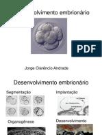 Desenvolvimento embrionário