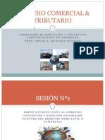 Diapositivas de Clases - Sesiones 1 y 2