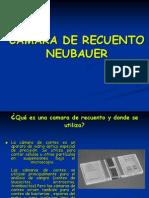 camaraderecuentoneubauer-120723124533-phpapp02