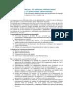 Tipos de Estructuras Organizativas - Para Combinar