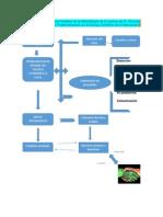 Diagrama de Flujo Puntos Nodales de la Metodología de la Lectura de R