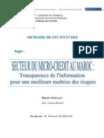 Secteur du microcrédit au Maroc trasparence de linformation pour une meilleure maîtrise des risqu