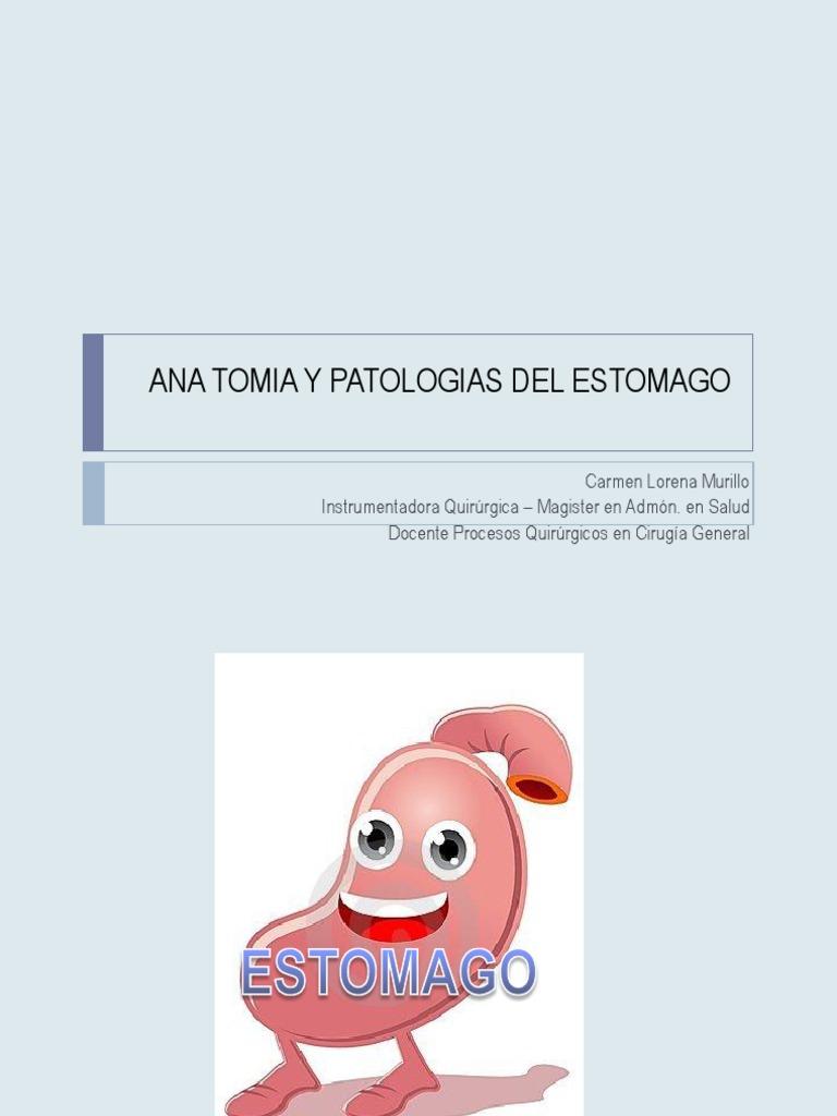 Anatomia y Patologias Del Estomago