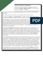 LOS CUATRO ESTADOS DE CONCIENCIA.doc