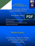 Medula Espinal Power Point2222