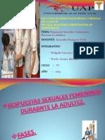 2. Respuesta Sexuales Rocio Delgado