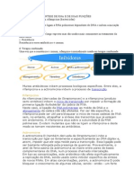 Rifamicinas e RNA Polimerase
