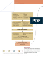 Diagnostic Tree of Seizures in Dogs